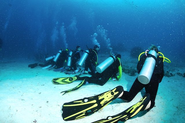 <p>All activities are reserved to the membership. Dive with ASD Zingaro Diving Center! Starting from a simple sea's baptism you will have the opportunity to continue to grow through the diving courses offered by us with the opportunity to become a professional, increasing your level and your knowledge. Contact Us [&hellip;]</p>