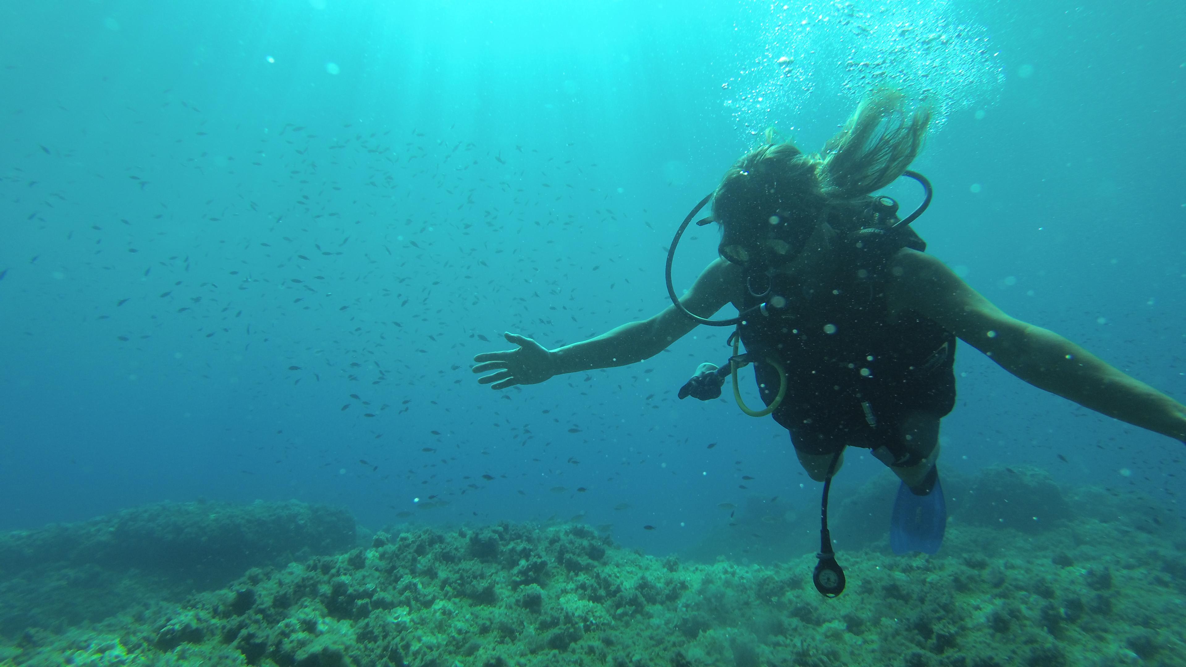<p>Vieni a scoprire insieme a noi le meraviglie dei fondali marini delle coste di Palermo e Catania…   Il portale dei subacquei – www.italiasub.it Prodotti gastronomici di produzione propria, biologici e a km 0.</p>